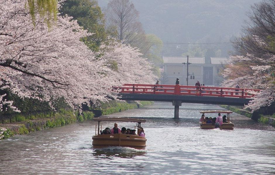 【京都】岡崎十石舟めぐりと京都散策